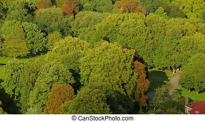 Park from above - Park from bird's eye view, green canopy