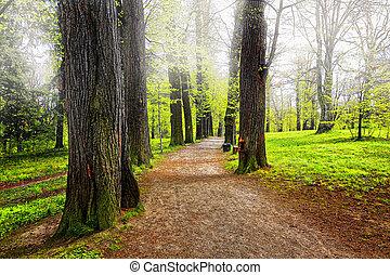 Park, Gasse