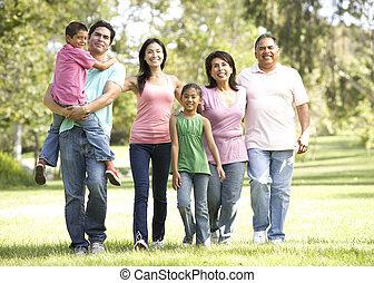 park, gehen, ausgedehnt, gruppe, familie