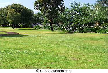 Park - Grassy park