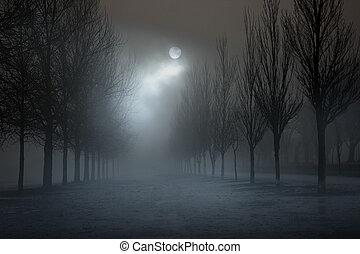Park in a foggy full moon night