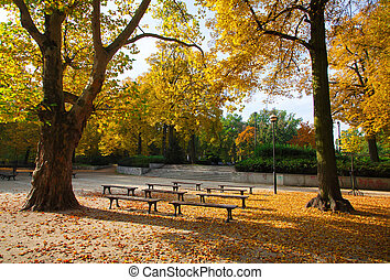 Park in autumn time