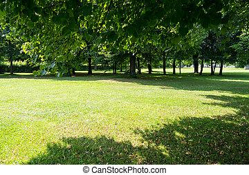 park, in, sommer