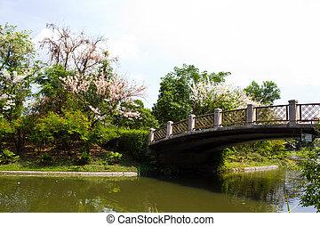 Park in summer in Thailand
