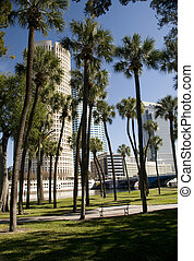 Park in Tampa Florida