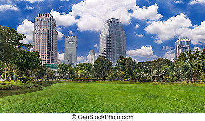 park in the city with blue sky