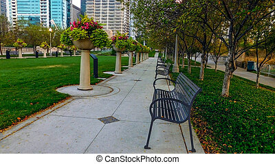 Park In The City