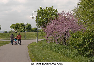 Park in the spring.