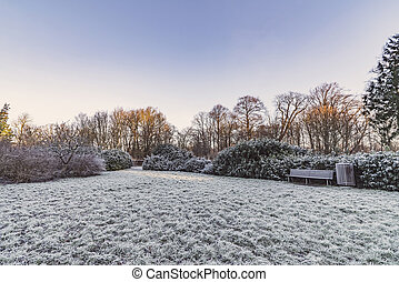 Park in the winter with a wooden bench