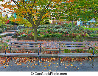 Park in Vancouver