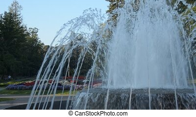 Park in Vrnjacka Banja, in Serbia - Fountain and flowers in...