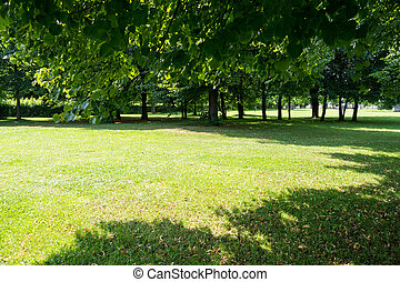 park, in, zomer
