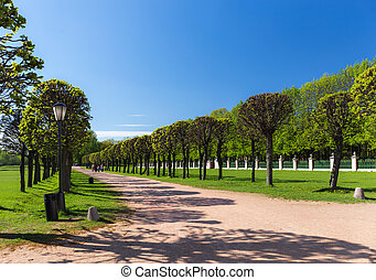 park, laan