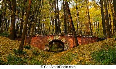 Park landscape at autumn