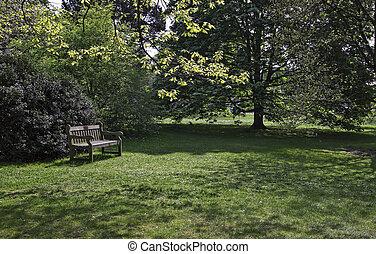 Park landscape. - Landscape in countryside in England.