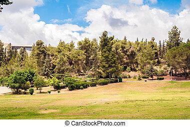 Park Landscape - Landscape of Gan Sucher park in Jerusalem