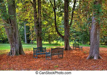park., lavice, podzimní, tři
