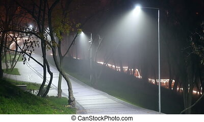 Park lights fog night - Park walkway lit by street lights...
