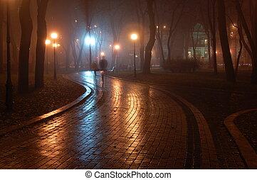 park, mariinsky, nacht