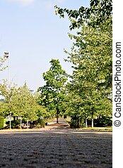 park, natuur, aanzicht