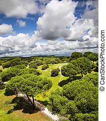 Park of Madrid and flying clouds - Huge suburban park of...