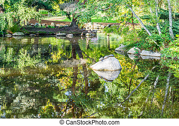 Park Pond Reflection