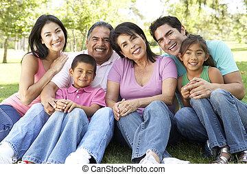 park, przewlekły, grupa, rodzinny portret