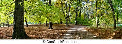 park, publiek, herfst