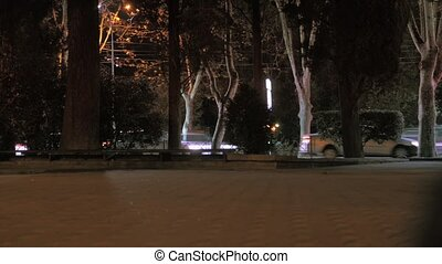 Park, road, cars passing by. Accelerated shooting, timelapse. Night time
