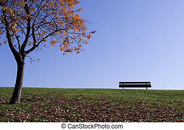 park, scène