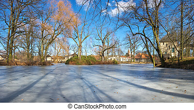 Park scenery with frozen pond