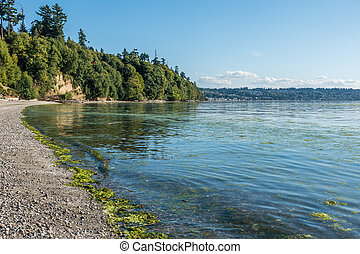 Park Shoreline - A view of the shoreline at Saltwater State ...
