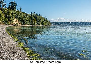 Park Shoreline