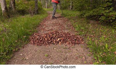 Park staff collect leaves in park