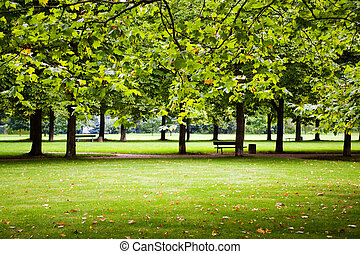park - Scenes of the old park
