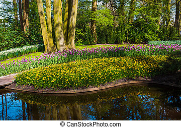 park, time., wiosna, tło
