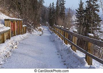Park trail in winter, Edmonton, Alberta