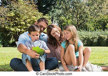 park, vergroten, zomers, blad, inspecteren, vader, glas, zoon, dag, gezin, vrolijke
