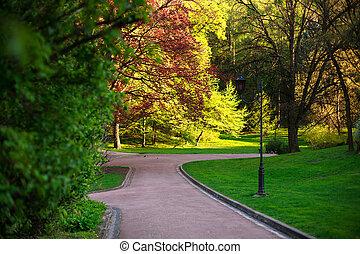 Park walkway in summer botanical garden