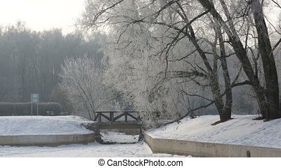Winter coutryside view with park and frozen lake