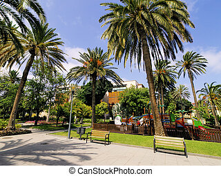 Park with palm trees.