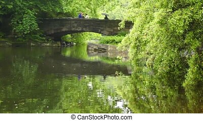 park with river and greenery people are going on  stone bridge