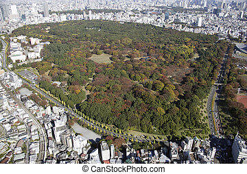 park, yoyogi, bereiche, luftblick