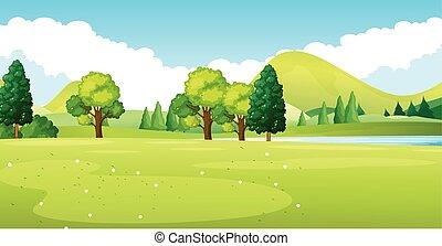 park, zielony, scena, pole