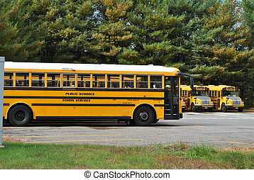 Parked Yellow School Buses