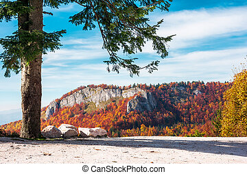 parking lot in Romania mountains. beautiful view of cliff...