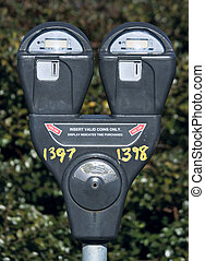 Parking Meter - Parking meter with bush in the background