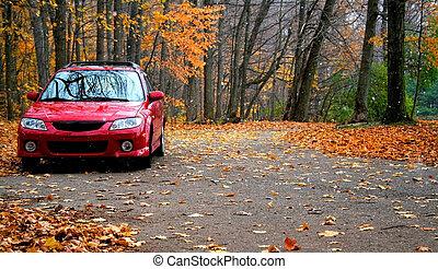 parking, rouges
