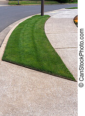 Parking Strip with Green Grass