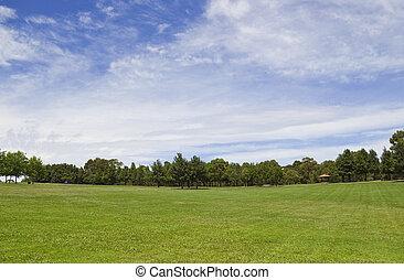 parklands, con, un, inmenso, cielo